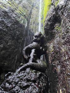 滝山龍福寺の倶利伽羅龍王、龍福寺の森